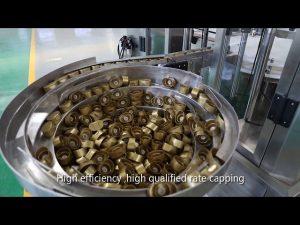 automatisk servokolvsås, honung, sylt, vätskepåfyllningslinje med hög viskositet